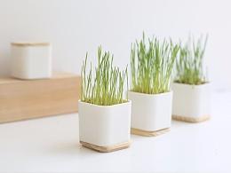 【植栽类】麦健康产品包装加木盖底托设计