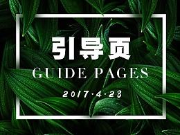 2017部分项目引导页