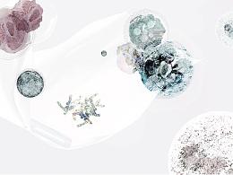 """""""染""""色世界——环境信息设计"""