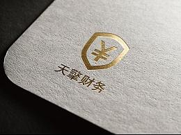 20160630 VI财务公司设计