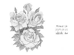 玫瑰花、老鹰、手绘素描