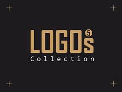 王先亮-LOGOS5