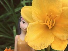 黑荔枝Flower系列-再见春天