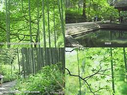 四季四象-云栖竹径