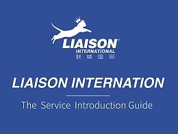 联域国际品牌形象包装 VI设计/logo设计  吉祥物设计