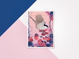 花&鸟 /恐龙