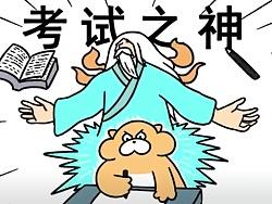 【动画×旱獭】考试加油