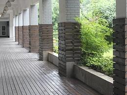 雨下雨静|校园一角