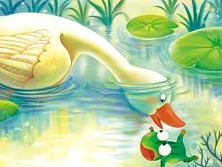 小池塘的故事