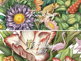 联想|BSEN植物商业插画设计