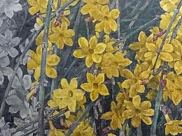 花木皆禅——迎春花