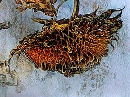 彩铅的魅力 —《向日葵》