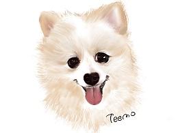 可爱的干儿子小Teemo