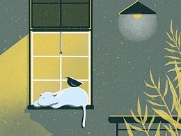 猫咪百态 [ 懒惰の光 ]