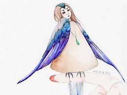 小须凤头雨燕