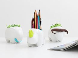 简约风手作植栽拍摄│桌面创意摆件、迷你盆栽