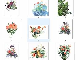 水彩植物合集