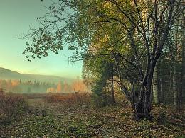 「行摄之路」秋