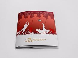 足球梦想方案