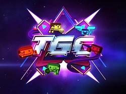 T.G.TGC2013_PromoA