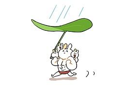 第四十话:雨天不怕,我有花花
