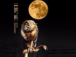 新艺传世  TTwei《136°鹰》 青铜雕塑