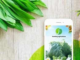 绿色生态农业APP