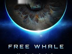 自游 · Free Whale