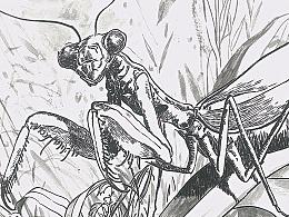《螳螂墓》