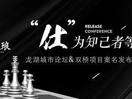 地产  项目 国际象棋 黑白色  龙湖城市 象棋