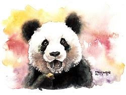 熊猫水彩【奥利奥】绘制视频