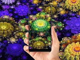 《 fractal art 》- 小米MIX2海报创意大赛