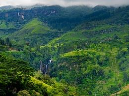 斯里兰卡.茶山