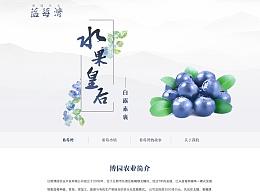 网页设计/移动端设计/banner设计/物料设计