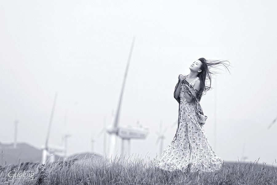 動漫 靈能百分百 第二季風車動漫