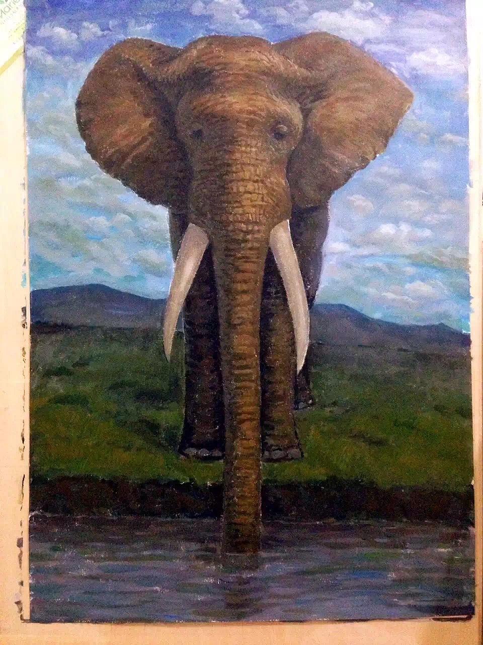 大象圆舞曲谱子