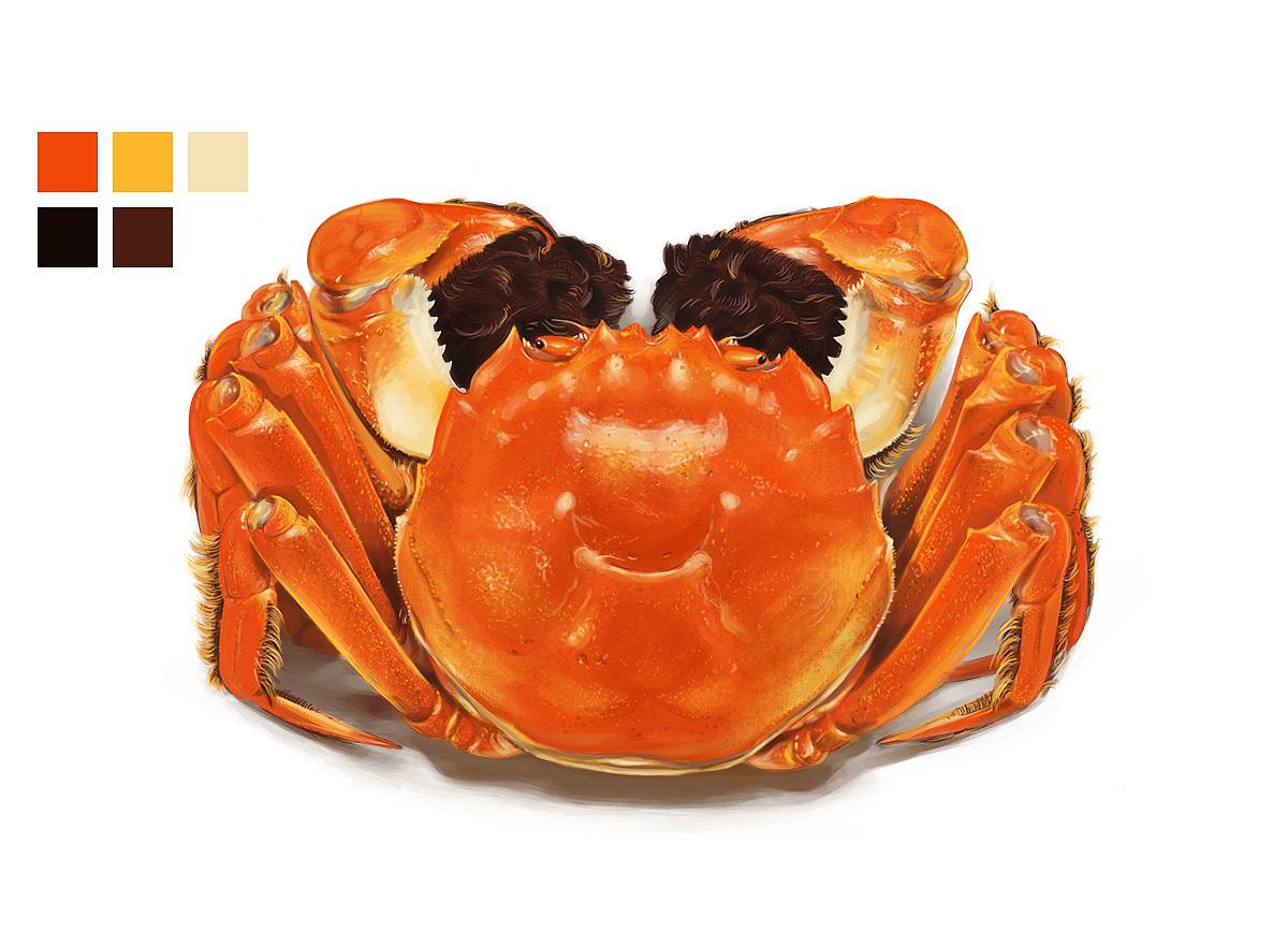 光碟螃蟹手工制作大全