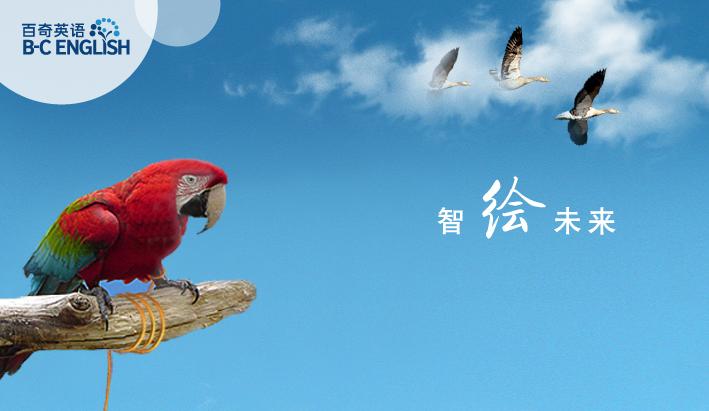 百奇英语宣传广告|海报|平面|zhaulii图片