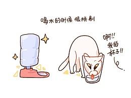 #温蛋黄# 猫咪日记