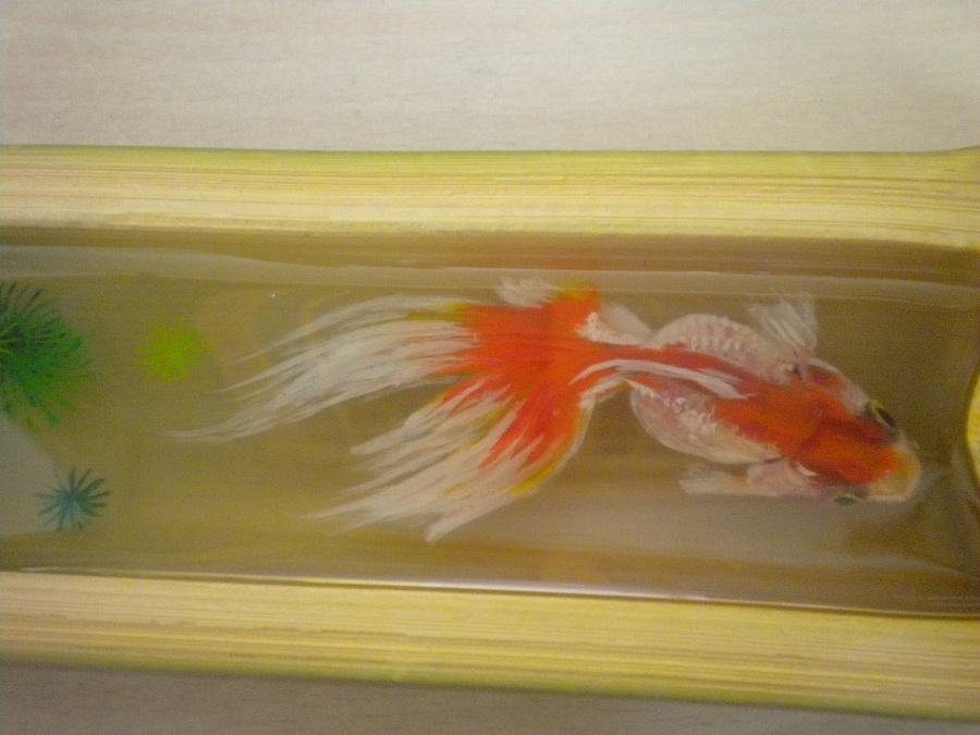 原创作品:3d手绘鱼