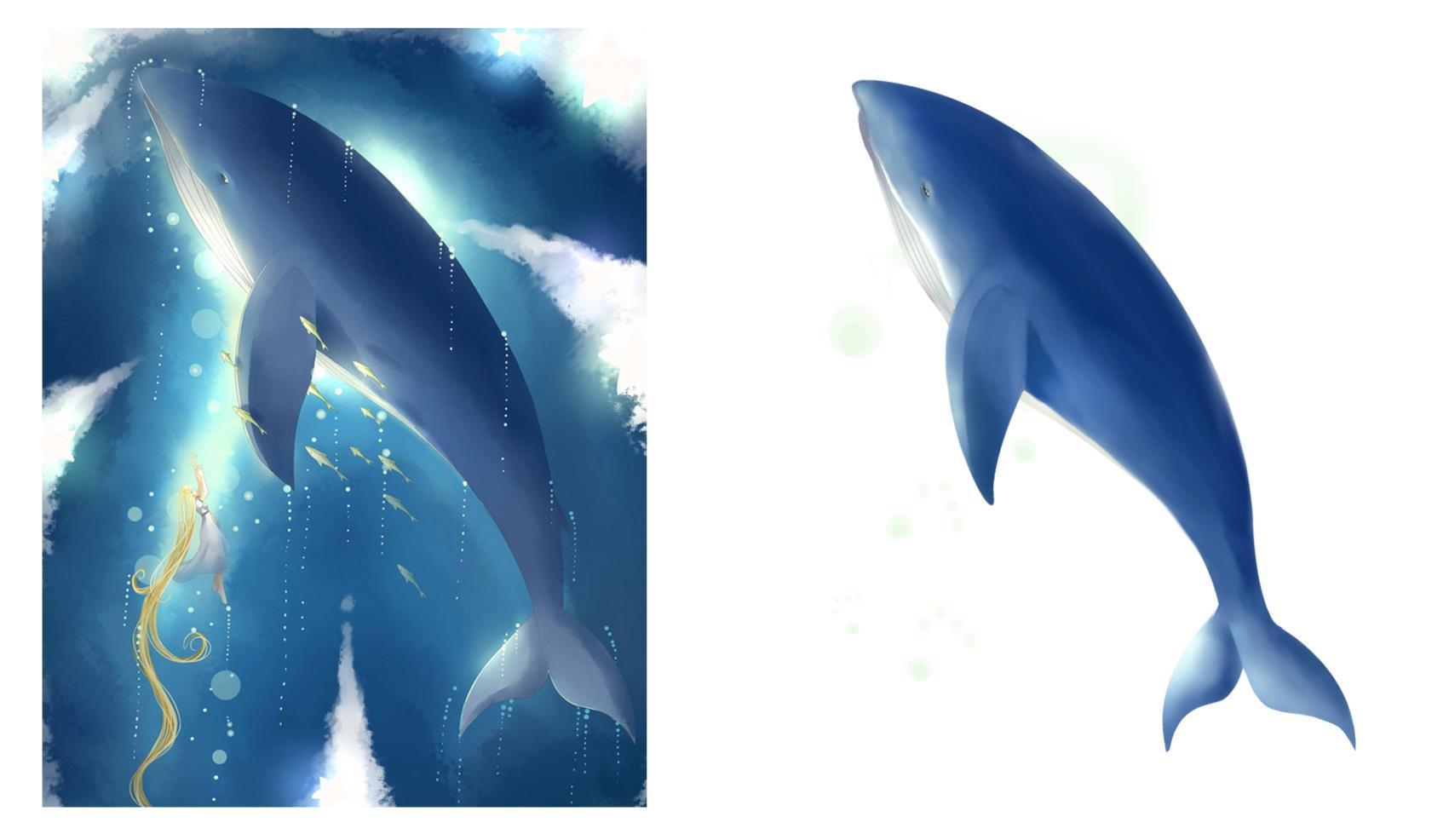 手绘-鲸鱼