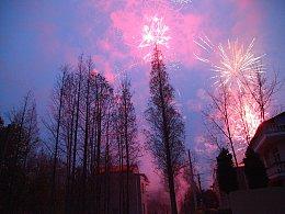 村里的烟花炸亮了夜空