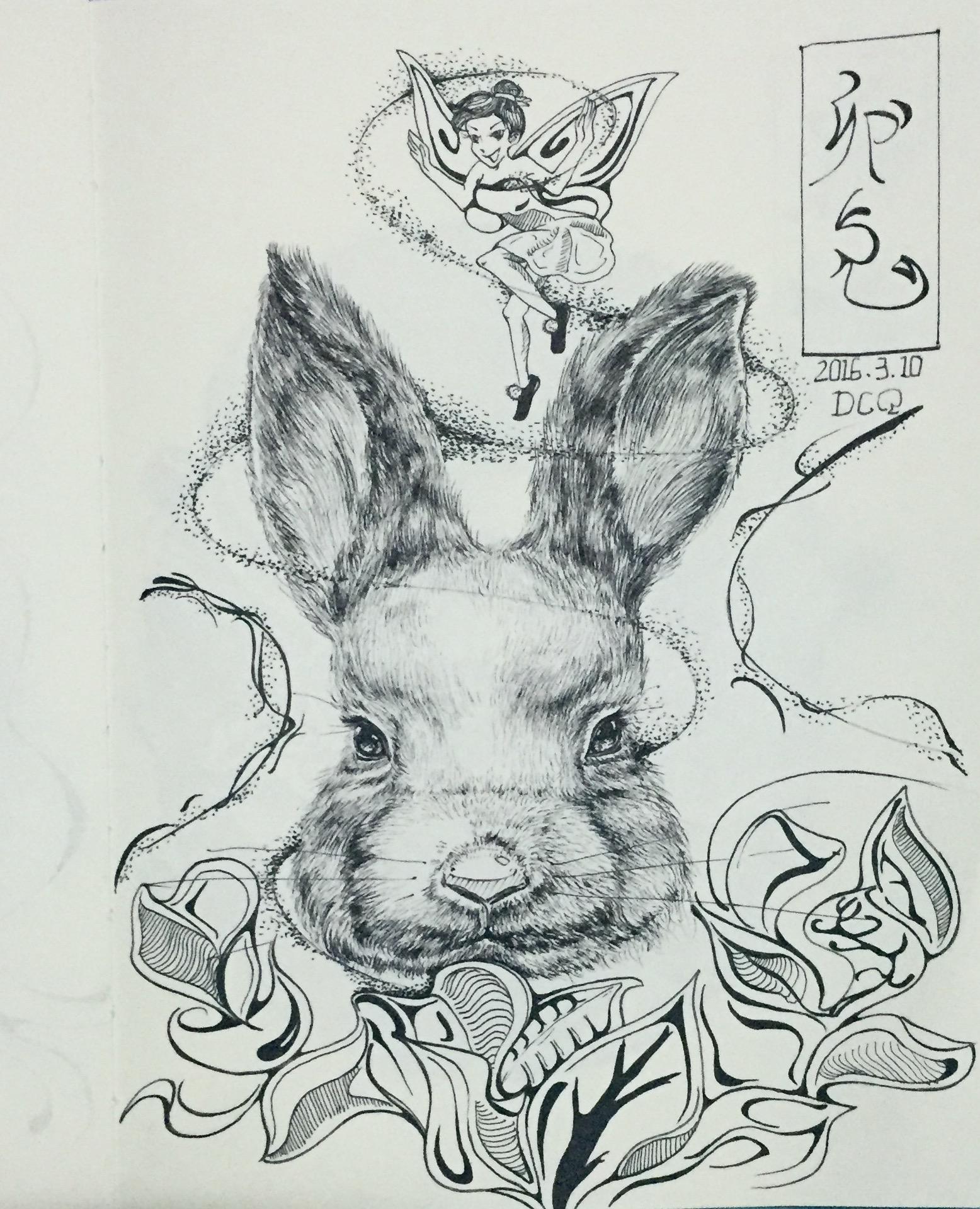 各类动物手绘