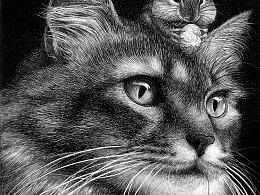 OY钢笔画:猫鼠游戏