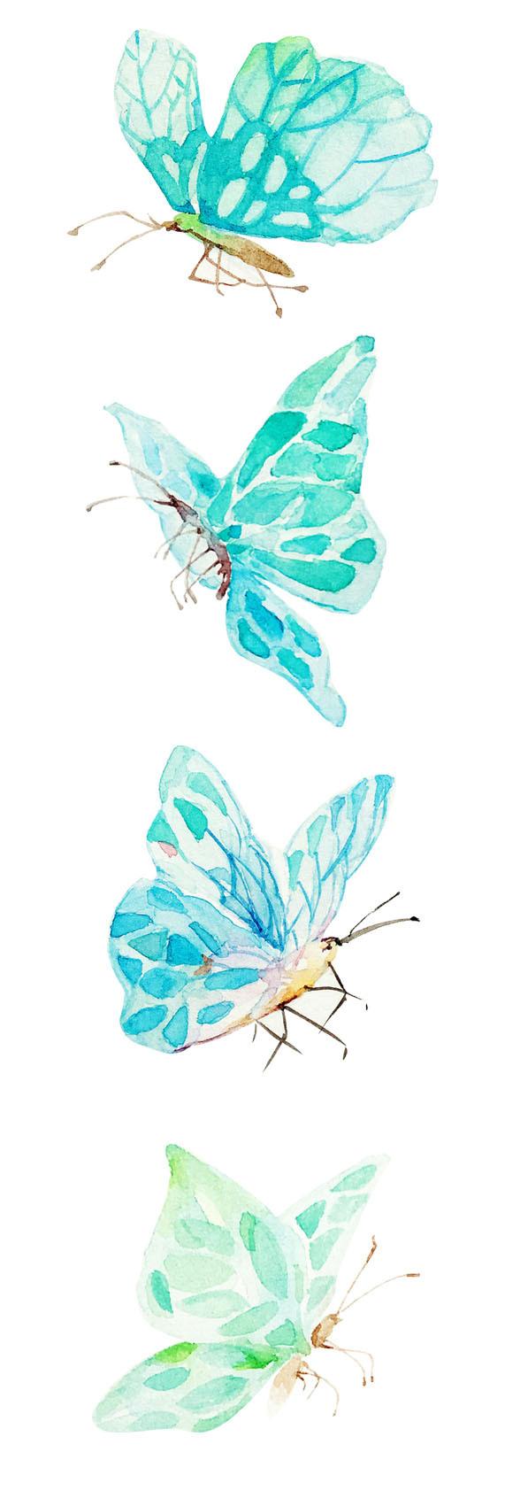 水彩-蝴蝶图片
