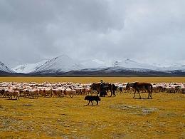 西藏 掠影
