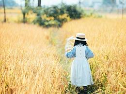 稻田-生命历程里幻出的又一道奇丽的风景