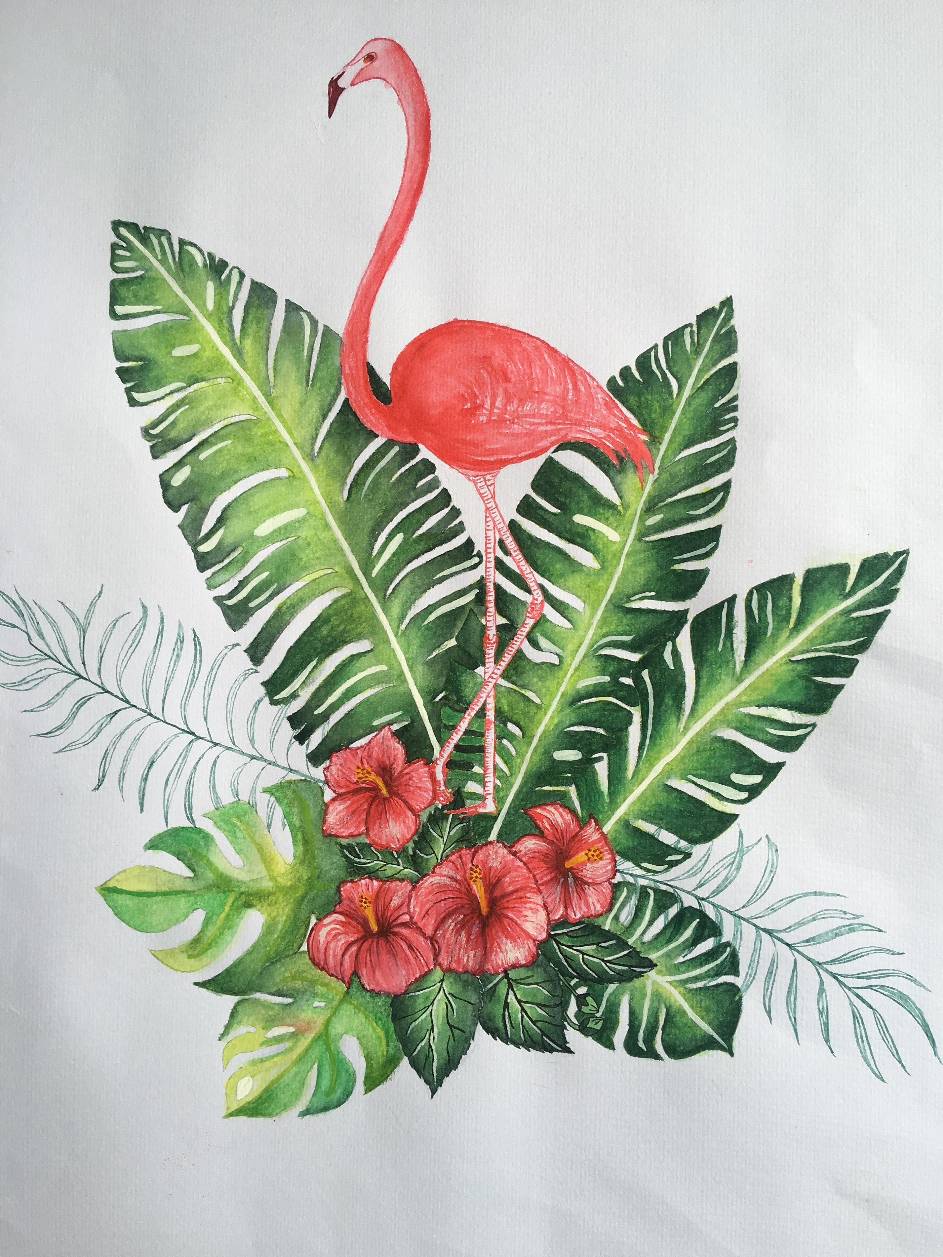 热带植物与火烈鸟