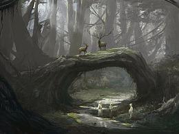 雨林  气氛图