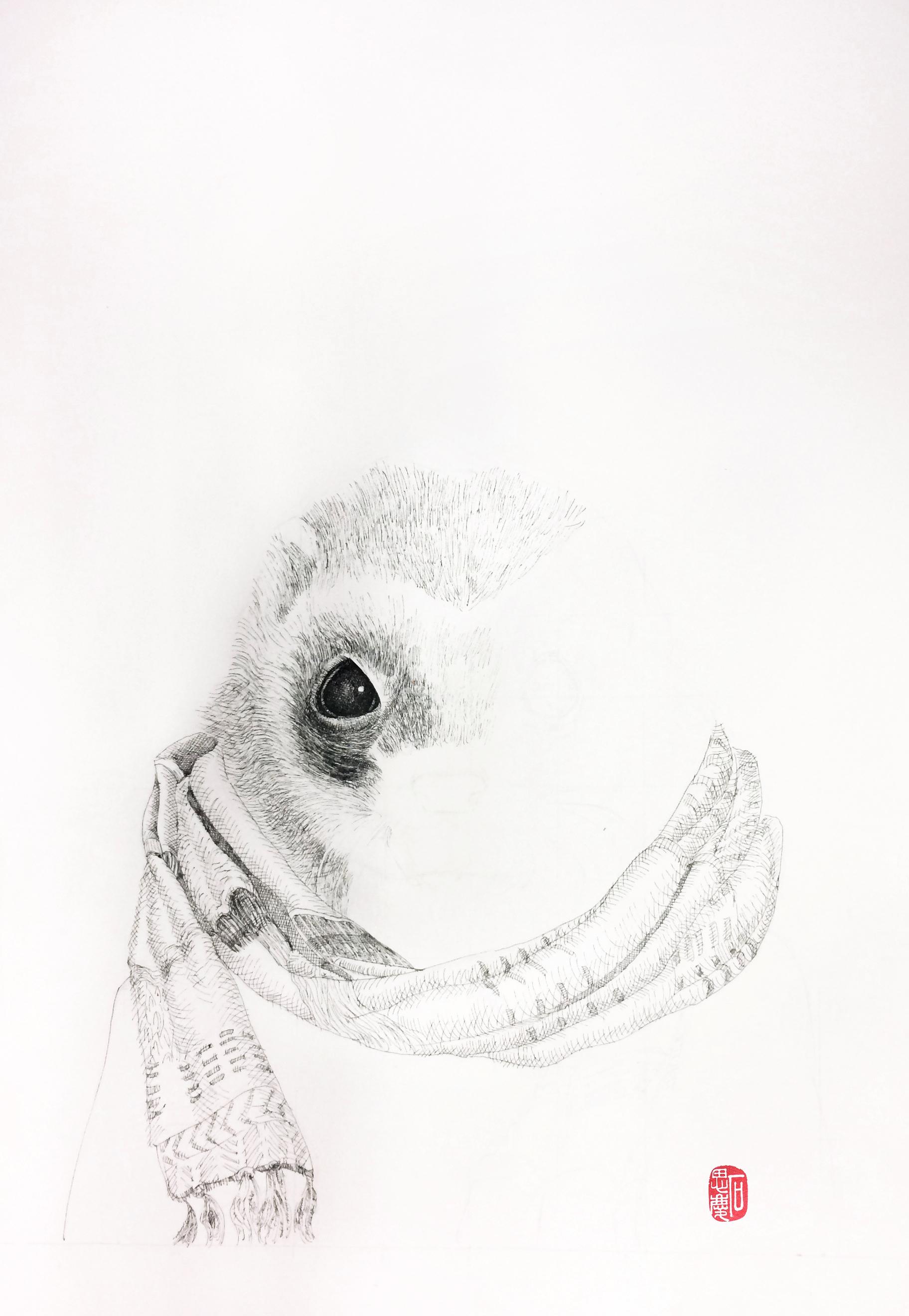 石思庆手绘--小黑鼬